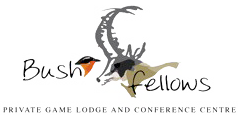 Bushfellows Game Lodge